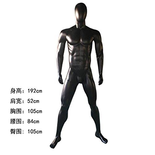 BEIYANG Male Mannequin Torso Dress Form Display Stand Designer Pattern (Black) by BEIYANG
