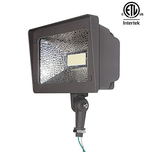 Arc 250 Led Light