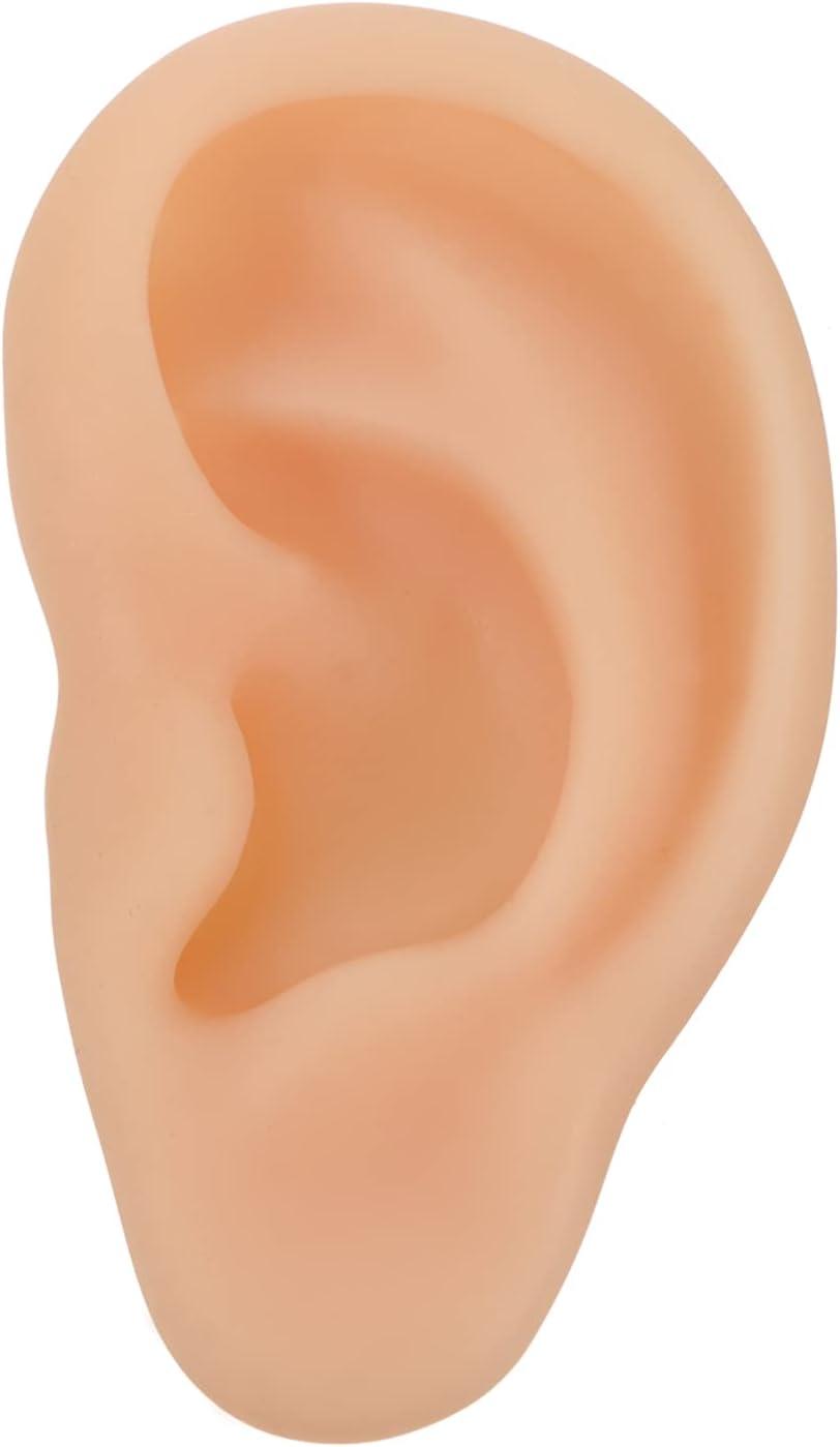 Baluue Silicone Ear Model Human Ear Model for Medical Home Office Teaching Tool Beige