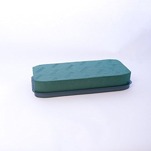 Pacco da 2 Oasis Retro In Plastica Floreale Spugna Scrigno Vassoi 45cm