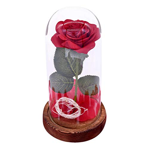 (Sikye Micro Landscape Simulated Flower LED Lamp, Preserved Red Rose in Glass Dome, for Home Display Valentine's Day Decor (C) )