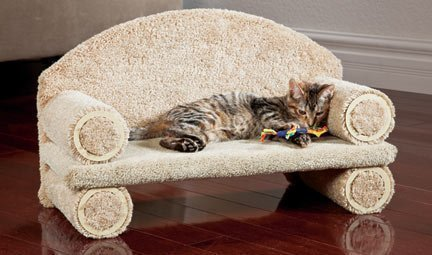 CLASSY KITTY Cat Couch, 30″ Assorted colors 41apo0XsyyL