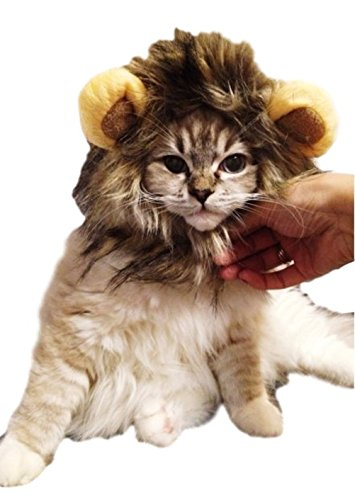 [Seijoe Pet Costume Lion Mane Halloween Costumes for Dog Cat] (Lion Costume For Small Dogs)