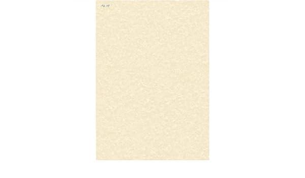 DECAdry - Papel /(A4, 95 g//m², paquete de 100 hojas, textura de ...