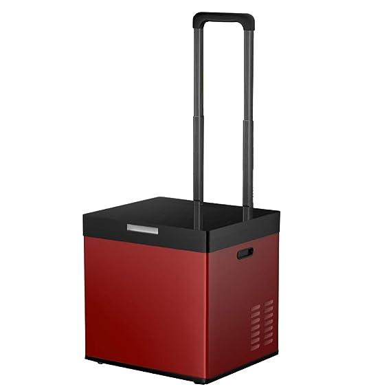 Refrigerador de Coche portátil y congelador, compresor Integrado ...
