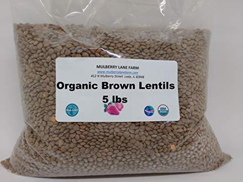 Brown Lentils 5 Pounds USDA Certified Organic NonGMO Bulk