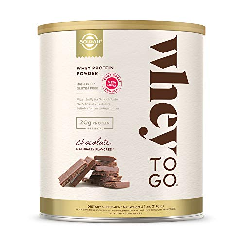 Solgar Whey To Go Whey Protein Powder, Chocolate, 42 ounce