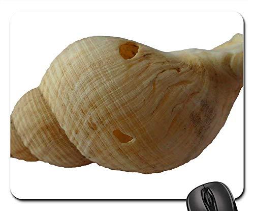 Mouse Pad - Sea Shell Clam Ocean Sea Shells Beach Sand 8