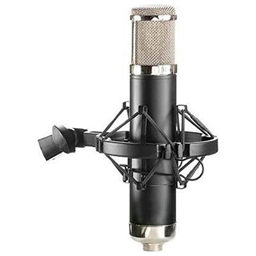 APEX 460B Tube Microphone (Anniversary Vocal Condenser Microphone)