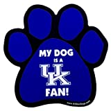 All Star Dogs NCAA Kentucky Wildcats Paw Print Car Magnet