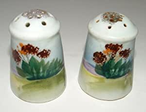 Vintage Floral Porcelain Salt And Pepper Shakers