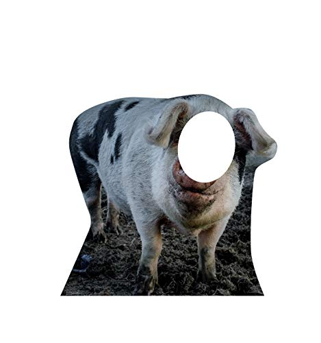 Advanced Graphics Pig Stand-in Life Size Cardboard Cutout Standup