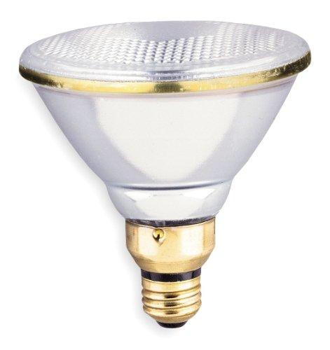 GE LIGHTING PAR38 Incandescent Light