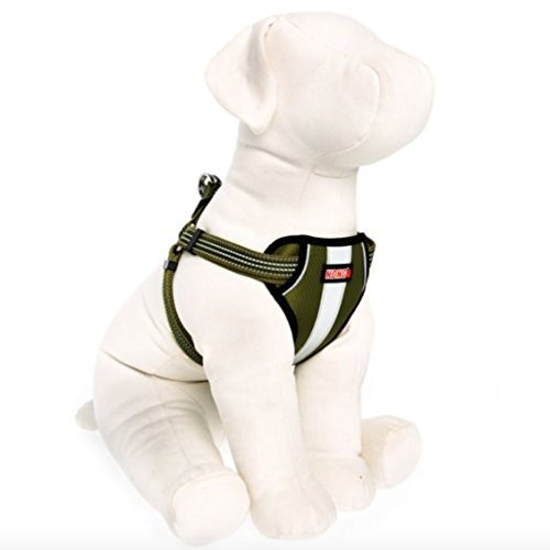 KONG Comfort Padded Reflective Chest Plate Dog Harness by Barker Brands Inc. (Medium, (Chest Plate Harness)