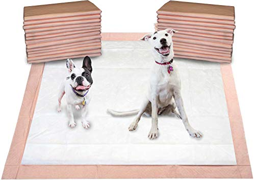 """Mednet Direct Ultra Absorbent Pet Training and Puppy Pads for Dogs and Pets, XX-Large (30"""" x 36"""") - 100 Count"""