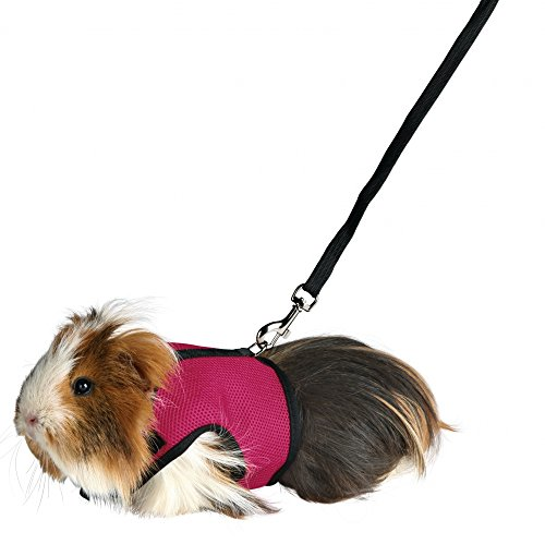 Be Good Soft Mesh Harness with Lead No Pull Comfort Padded Vest Strong Durable Nylon Harness and Leash Set Adjustable All Season for Small Pet Kitten Puppy Rabbit Guinea Pigs S Pink