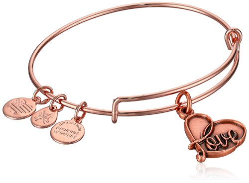 - Alex and Ani Women's Love Rose Gold Charm Bangle Bracelet, Expandable