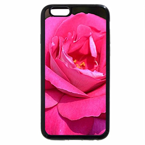iPhone 6S / iPhone 6 Case (Black) A gorgeous hot pink rose