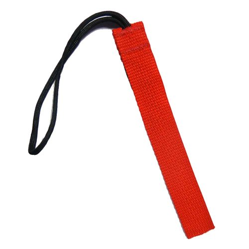 Tac Shield 1-Inch Wide Stealth Gear Tag (2-Pack), Red