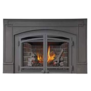 Amazon.com: Wolf Steel XIR3N Napoleon Deluxe Natural Gas Fireplace Insert: Home & Kitchen