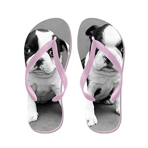 Cafepress Boston Terrier Puppies - Flip Flops, Grappige String Sandalen, Strand Sandalen Roze
