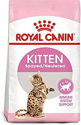 Amazon.com : Royal Canin Feline Health Nutrition Spayed ...