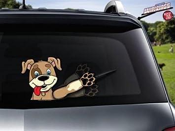 """Limpiaparabrisas Trasero Accesorio Barley Rescue Dog """""""