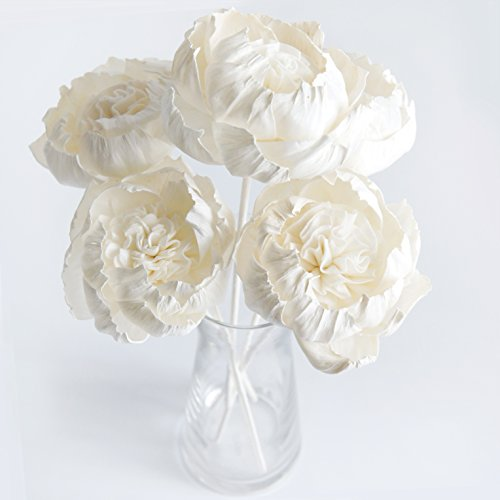 Plawanature Set of 5 Peony Brides Dream Flower 3'' Sola Flower with Reed Diffuser for Home Fragrance. by plawanature