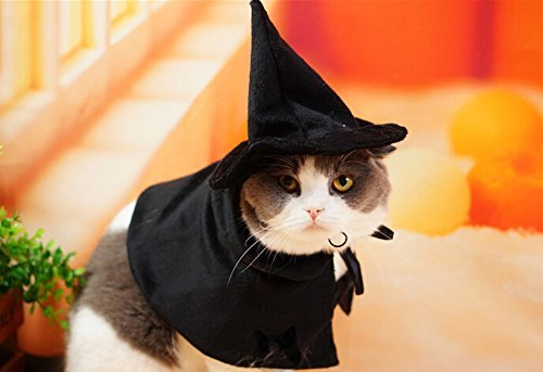 Lanyar Cute Hooded Cloak Witch/Wizard Halloween Holiday Costume for Small Dogs & Cat Kitten, Cat Costume