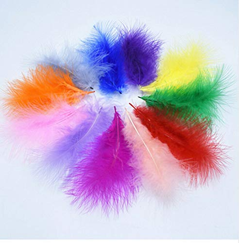 FidgetKute 3-6Inches 8-15 cm Turkey Marabou Feathers for Carnival Halloween Christmas DIY 10pcs Mixed Color One Size