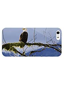 3d Full Wrap Case for iPhone 5/5s Animal Bald Eagle79
