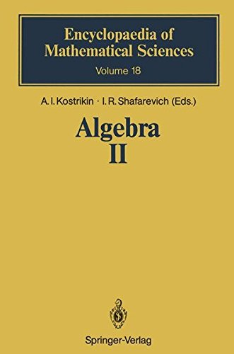 Algebra II: Noncommutative Rings Identities (Encyclopaedia of Mathematical Sciences) (v. 2)