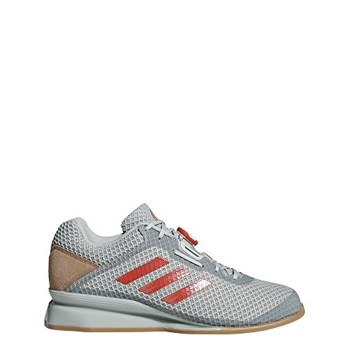 adidas Men's Leistung.16 II Cross Trainer, ash Silver/raw Amber/Trace Cargo, 12 M US