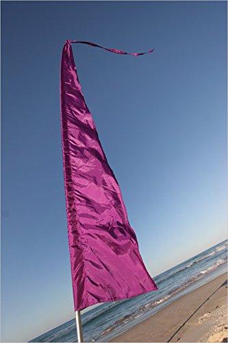 Festival Flags for Festivals, Advertising, Garden & Schools ~ 16' Feet Tall! Parachute Silk! Blue, Green, Pink, Purple & Yellow! ()