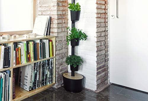 Citysens- Kit Huerto Urbano Vertical con autorriego Inteligente ...