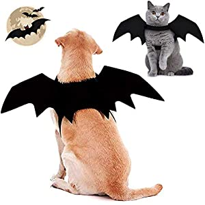 Brocarp Dog Bat Wings, Halloween Costume Dog Outfits, for Cat and Small Medium Large Dog(L), Cosplay Decoration for Dogs…