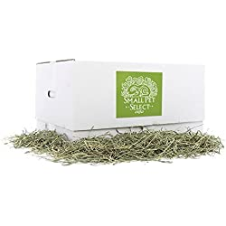 Small Pet Select 2nd Cutting Timothy Hay Pet Food, 20-Pound