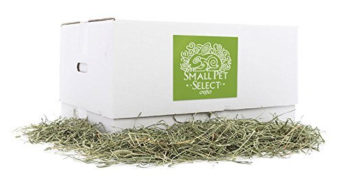 Small Pet Select 2nd Cutting Perfect Blend Timothy Hay Pet Food by Small Pet Select
