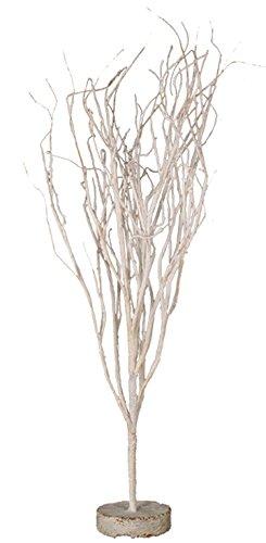 31 Twig - 1