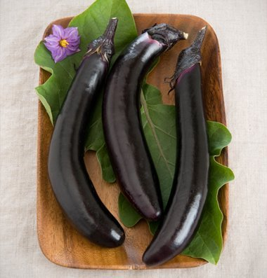 David's Garden Seeds Eggplant Orient Express D354QWS (Purple) 25 Hybrid Seeds