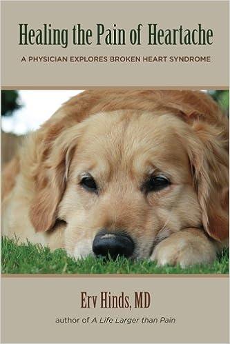 Healing the Pain of Heartache