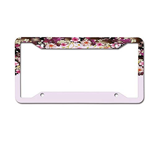 (ASLGlicenseplateframeFG Daisy Bouquet Botany Petals with Butterfly Wedding Valentines Romance Design Novelty Aluminum License Plate Decorative Front Plate 6 X 12 inches 4 Holes)