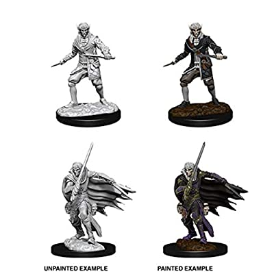 WizKids Pathfinder Deep Cuts Unpainted Miniatures: Male Elf Rogue: Toys & Games