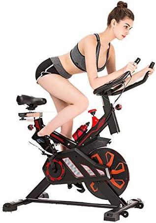 BF-DCGUN Bicicleta giratoria, Equipos de Gimnasia para el hogar ...