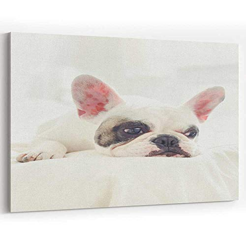 Actorstion Sad Pied French Bulldog Puppy Lying on Bed Canvas Art Wall Dcor for Modern Home Decor ()
