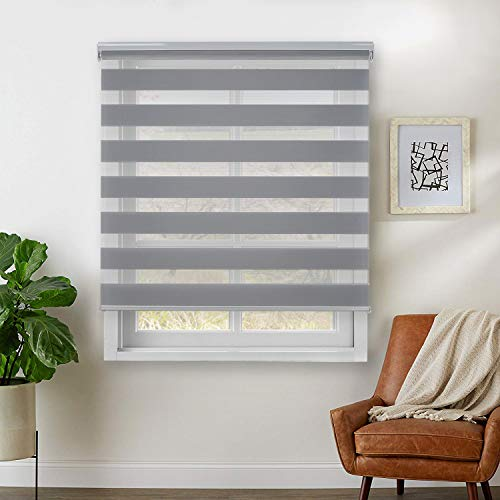 Rama Rose Dual Layer Sheer Roller Shades Combi Window Blind,Day and Night Blind Curtain,48″ x 72″,(Light Gray)