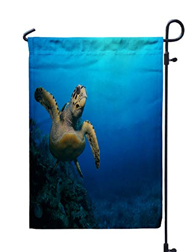 (ROOLAYS Outdoor Seasonal Garden Flags Stands Sea Turtle Swimming Above The Coral Reef Mexico Riviera Maya Double Sided Colorful Holiday Yard Flag 12X18 inches)