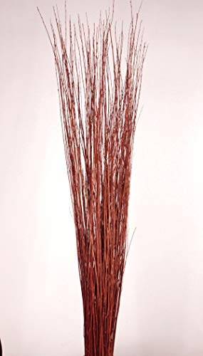 Green Floral Crafts 4-5 ft Tall, Burnt Red-Orange Asian Willow, Bunch of 90-100 Tall Sticks &Wispy Grass (Vase Not Included)