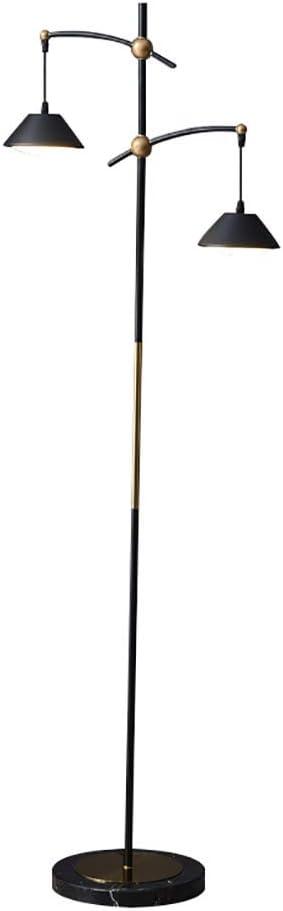 Home Mall- Lámpara de Pie de Metal Moderna LED 2-Cabezas para Sala de Estar, Interruptor de Pie de Pantalla de PMMA Negro 160 × 53cm: Amazon.es: Hogar