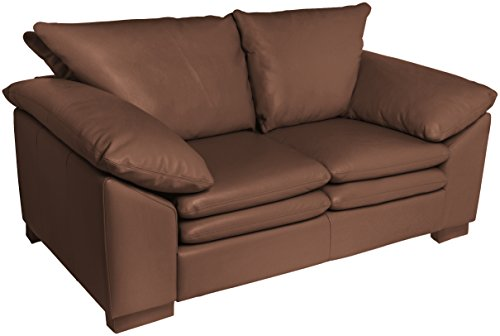Omnia Leather Fargo 2 Cushion Loveseat in Leather, Standard No Nail Head, Softstations Chocolate